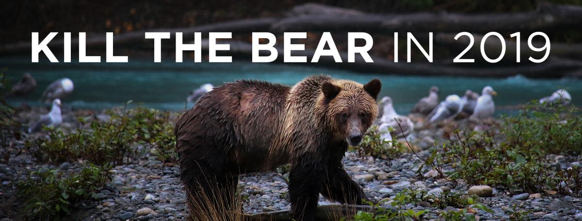 Kill the Bear